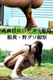 トイレ寸前 脱糞お漏らし#2  SD&ハイビジョン高画質(HDV-720p)(動画セット版)
