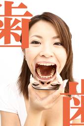 歯観察 すみれチャン篇(写真データ40枚付き)